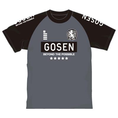 ゴーセン 2018春企画Tシャツ プラクティス ラグランエンブレム (J18P03)